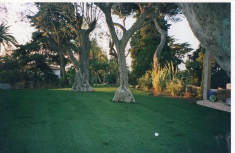 Création de jardin à Cap d'Ail (06)